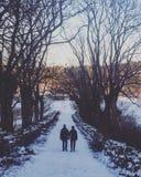 Alberi di camminata Allee del romace di amore Fotografia Stock Libera da Diritti
