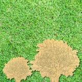 Alberi di carta su erba verde Fotografia Stock Libera da Diritti