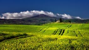 Alberi di cipresso famosi della Toscana con la casa dell'agricoltore un giorno soleggiato e le nuvole bianche Fotografia Stock