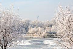 Alberi di inverno coperti di fiume della città di brina bloccato dal ghiaccio Immagini Stock Libere da Diritti