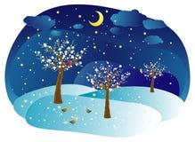 Alberi di inverno, illustrati di vettore Fotografie Stock Libere da Diritti