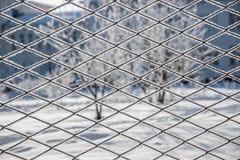 Alberi di inverno la vista attraverso le barre fotografie stock