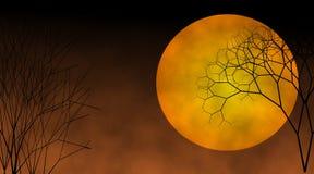 Alberi di morte sotto la luna scura Fotografia Stock