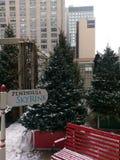 Alberi di Natale alla pista di pattinaggio del cielo dell'hotel della penisola immagine stock libera da diritti