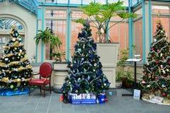 Alberi di Natale decorati su esposizione Fotografia Stock Libera da Diritti