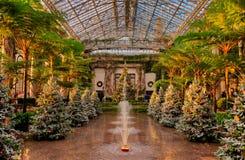 Alberi di Natale dentro il conservatorio ai giardini di Longwood, penna Fotografia Stock Libera da Diritti