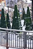 Alberi di Natale in un villaggio della stazione sciistica Immagine Stock Libera da Diritti