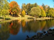 Alberi di ottobre Fotografie Stock