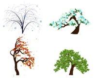 Alberi di quattro stagioni Immagini Stock Libere da Diritti