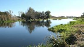 Alberi di salice sulla riva del fiume di Havel Paesaggio di regione di Havelland germany video d archivio