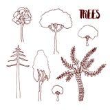 Alberi di schizzo della mano di vettore messi Raccolta isolata disegnata a mano dell'albero di vettore Immagine Stock
