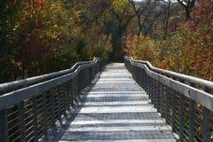Alberi diretti walkwway del ponte durante l'autunno Immagini Stock Libere da Diritti
