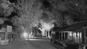 Alberi e case in bianco e nero archivi video
