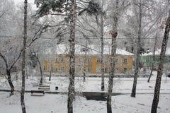 Alberi e case nella neve Immagine Stock Libera da Diritti