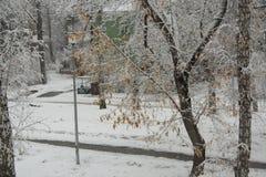 Alberi e case nella neve Fotografie Stock