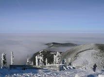 Alberi e colline di inverno coperti da neve Fotografie Stock