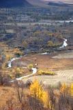 Alberi e fiume Fotografie Stock