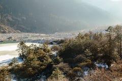 Alberi e fiume congelato con ghiaccio ed acqua in sideway quello sul modo ad allo zero assoluto a Lachung nell'inverno Il Sikkim  Fotografia Stock Libera da Diritti