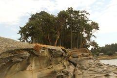 Alberi e formazione rocciosa Fotografie Stock Libere da Diritti