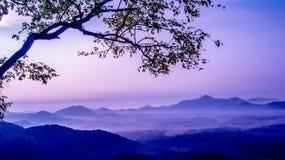 Alberi e montagne Immagine Stock Libera da Diritti