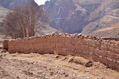 Alberi e montagne Fotografia Stock Libera da Diritti