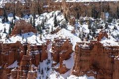Alberi e neve sulla parete di canyon pura, Bryce Canyon, Utah Fotografie Stock Libere da Diritti