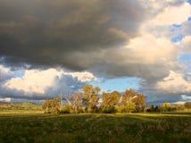 Alberi e nuvole Fotografie Stock