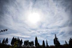 Alberi e nuvole Fotografia Stock Libera da Diritti