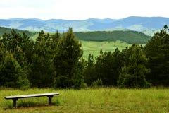 Alberi e paesaggio di Zlatibor Fotografia Stock