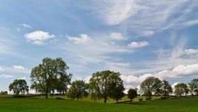 Alberi e pascoli, vallate rurali di Yorkshire Fotografie Stock