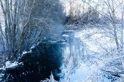 Alberi e ramoscelli innevati su una corrente congelata nell'inverno Fotografie Stock