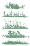 Alberi e siluette dell'erba Fotografie Stock Libere da Diritti
