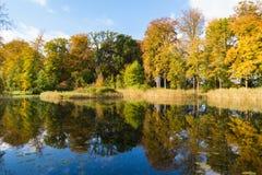 Alberi e stagno di autunno sulla proprietà Boekesteyn, Paesi Bassi Immagini Stock