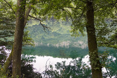 Alberi e un lago con un sole di riflessione dopo alba Fotografia Stock Libera da Diritti