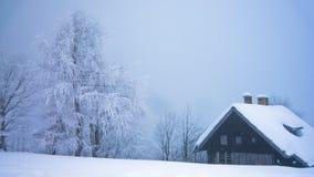 Alberi e una capanna della montagna in una nebbia coperta di neve alla montagna Vogel in alpi slovene Immagine Stock