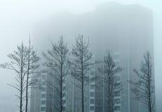 Alberi e una casa nella nebbia Fotografie Stock