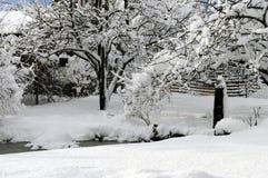 Alberi ed erba coperti di strato spesso di neve al sole Fotografia Stock Libera da Diritti