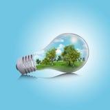 Alberi, erba e cielo nella lampadina Fotografia Stock