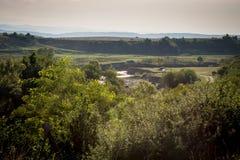 Alberi, erba e fiume verdi con le montagne nei precedenti in Romania fotografie stock