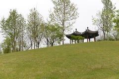 Alberi, erba verde e padiglioni fotografie stock libere da diritti