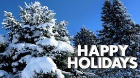 Alberi felici della neve di inverno di Natale di feste fotografie stock