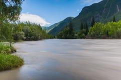 Alberi forestali del fiume della montagna Fotografia Stock Libera da Diritti