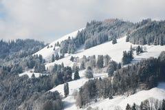 Colline coperte di alberi e di neve in Svizzera Immagini Stock Libere da Diritti