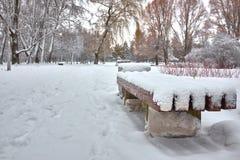 Alberi innevati e benche di legno nel parco della città immagine stock