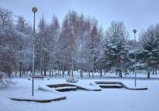 Alberi innevati e benche di legno nel parco della città fotografia stock