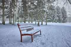 Alberi innevati e benche di legno nel parco della città immagini stock