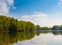 Alberi intorno al lago nella primavera Immagini Stock