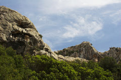 Alberi, montagne & cielo Fotografia Stock