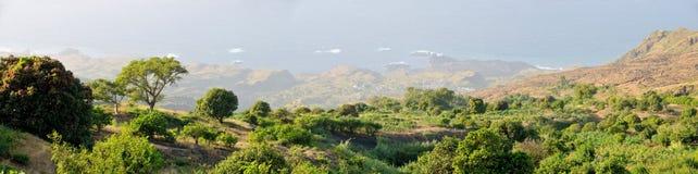 Alberi in Monte Preto Fotografia Stock