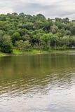 Alberi nel lago Garibaldi in Encantado Fotografie Stock Libere da Diritti